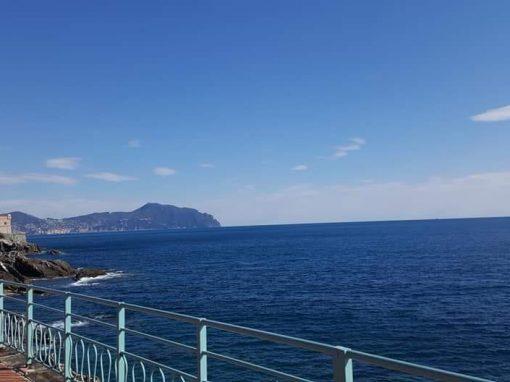 Lettera dai volontari AVO di La Spezia
